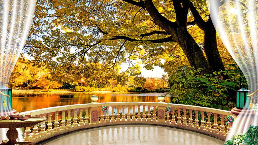 秋天枫树林荫道落叶枫叶电视背景墙