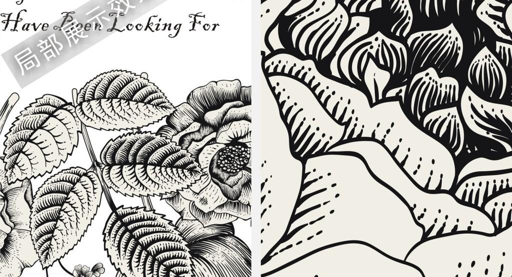 北欧风格玫瑰花草黑白素描三联装饰挂画