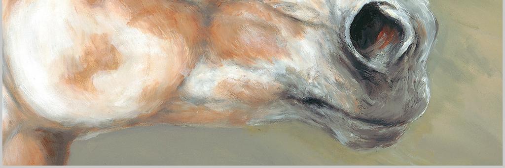 北欧现代手绘骏马高清动物油画装饰画