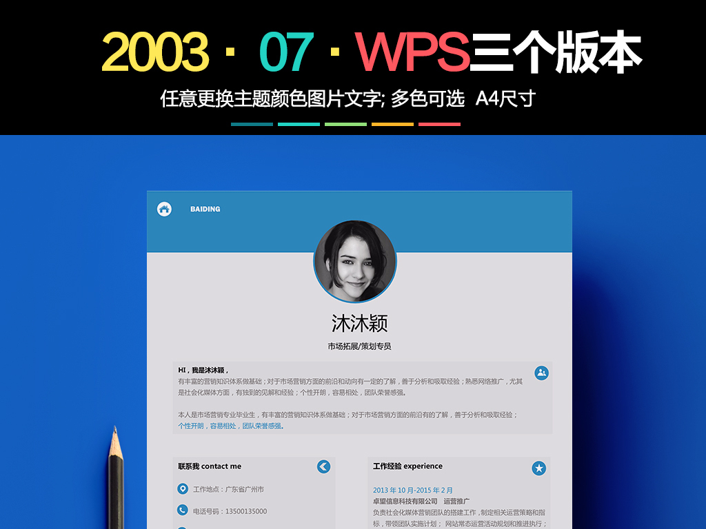 e2003个人简历模板wps