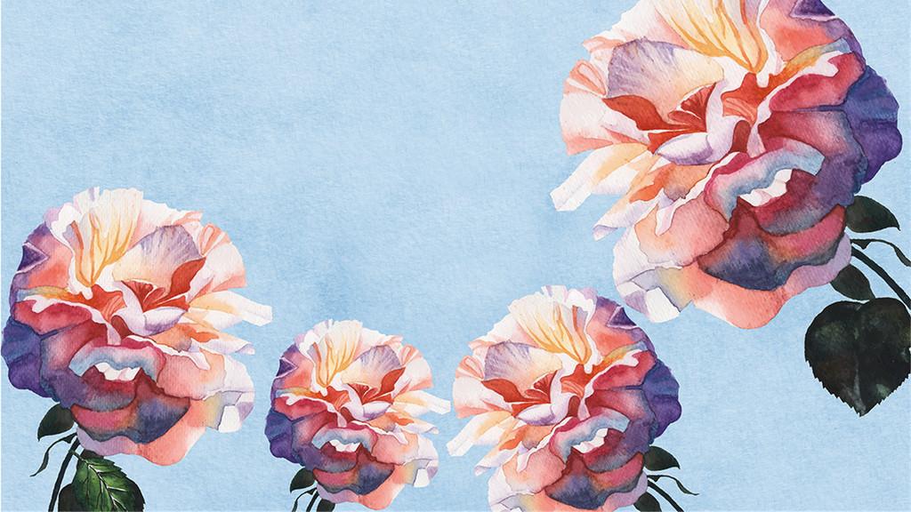 梦幻手绘玫瑰背景墙图片