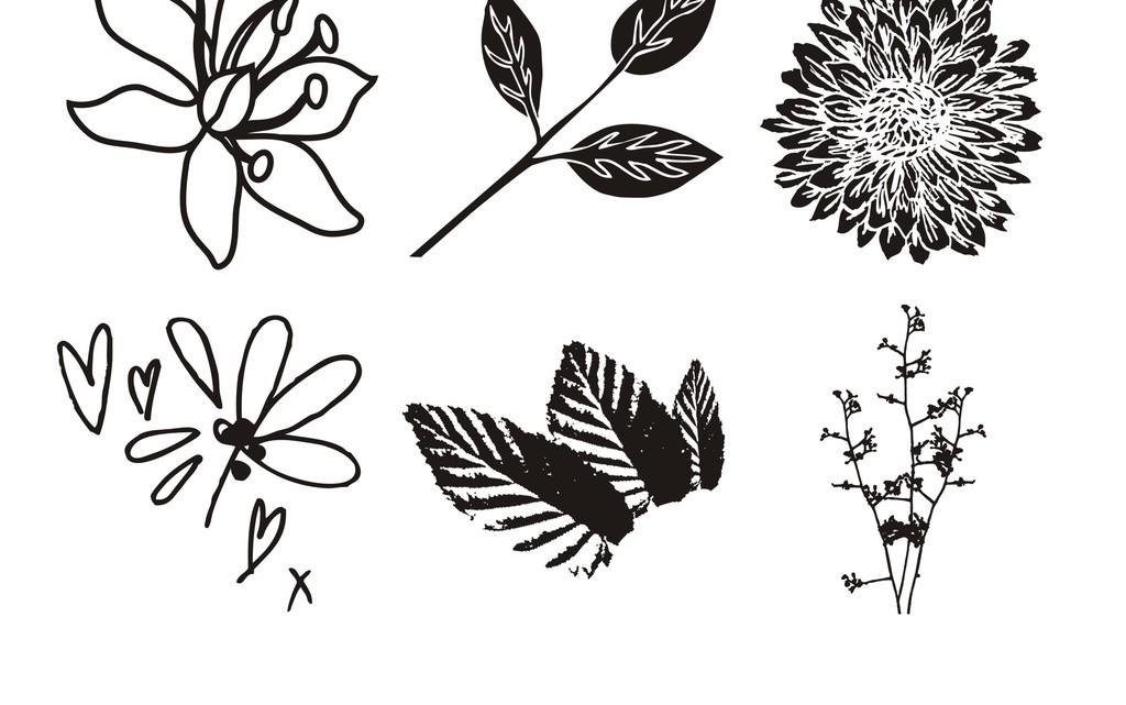 植物花卉简笔装饰画树叶花朵