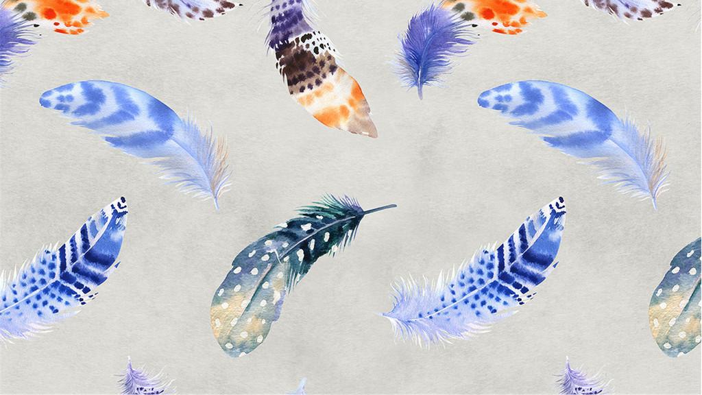 手绘羽毛背景墙