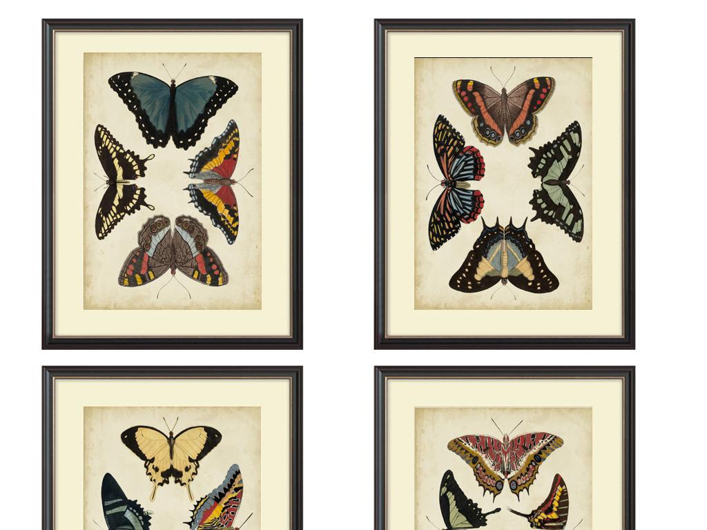 彩色手绘蝴蝶装饰画