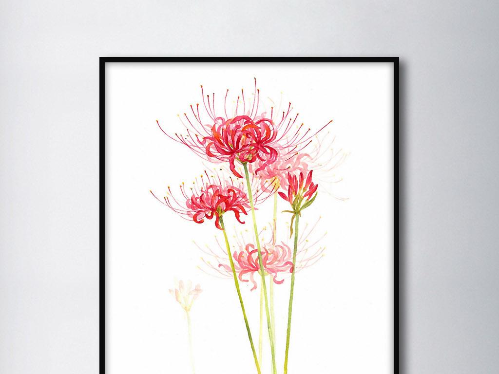 彼岸花欧式日韩小清新手绘花卉家居装饰画