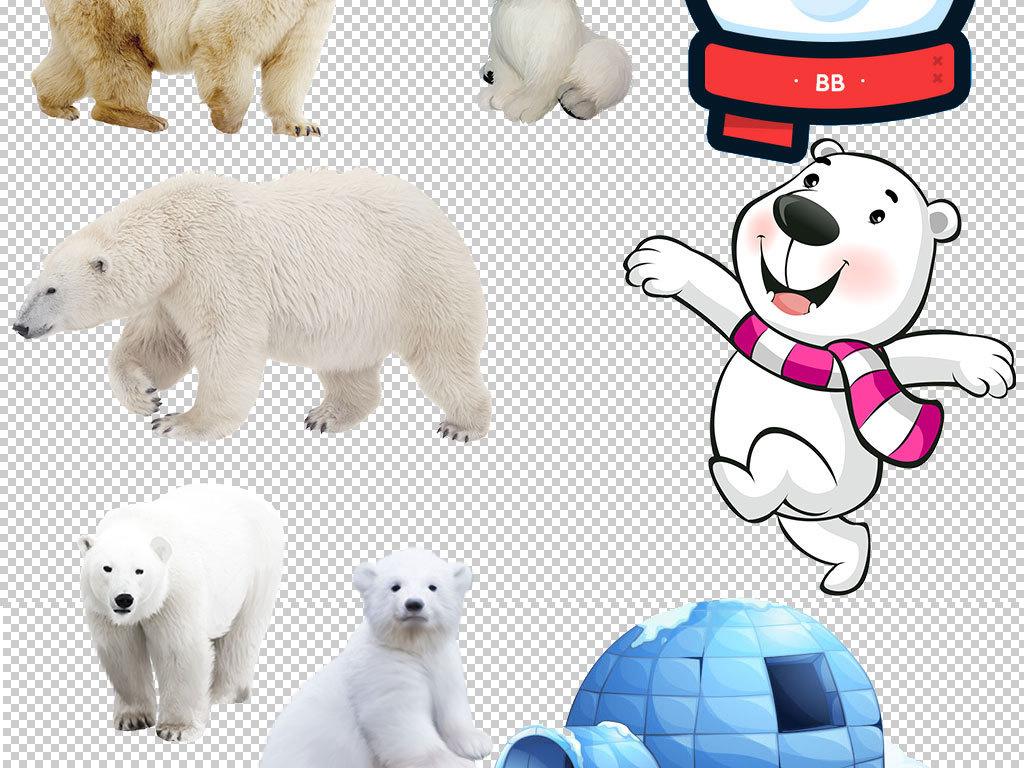 作品模板源文件可以编辑替换,设计作品简介: 卡通北极熊动物图片海报