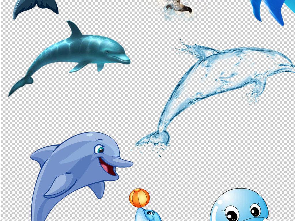 海豚图片海豚头像                                  手绘海豚