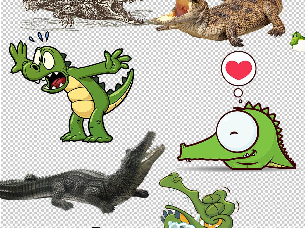 头像手绘鳄鱼                                  鳄鱼素材鳄鱼动物