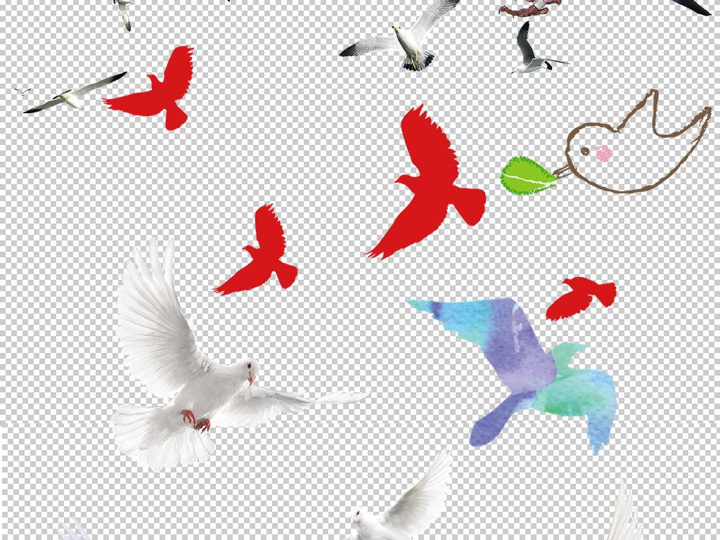 鸽子图片                                  和平鸽手绘鸽子