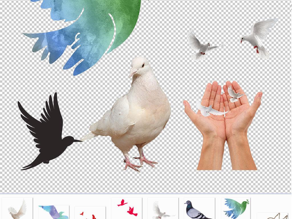 我图网提供精品流行卡通鸽子动物图片海报素材下载,作品模板源文件可以编辑替换,设计作品简介: 卡通鸽子动物图片海报素材 矢量图, RGB格式高清大图,使用软件为 Photoshop CS6(.png)