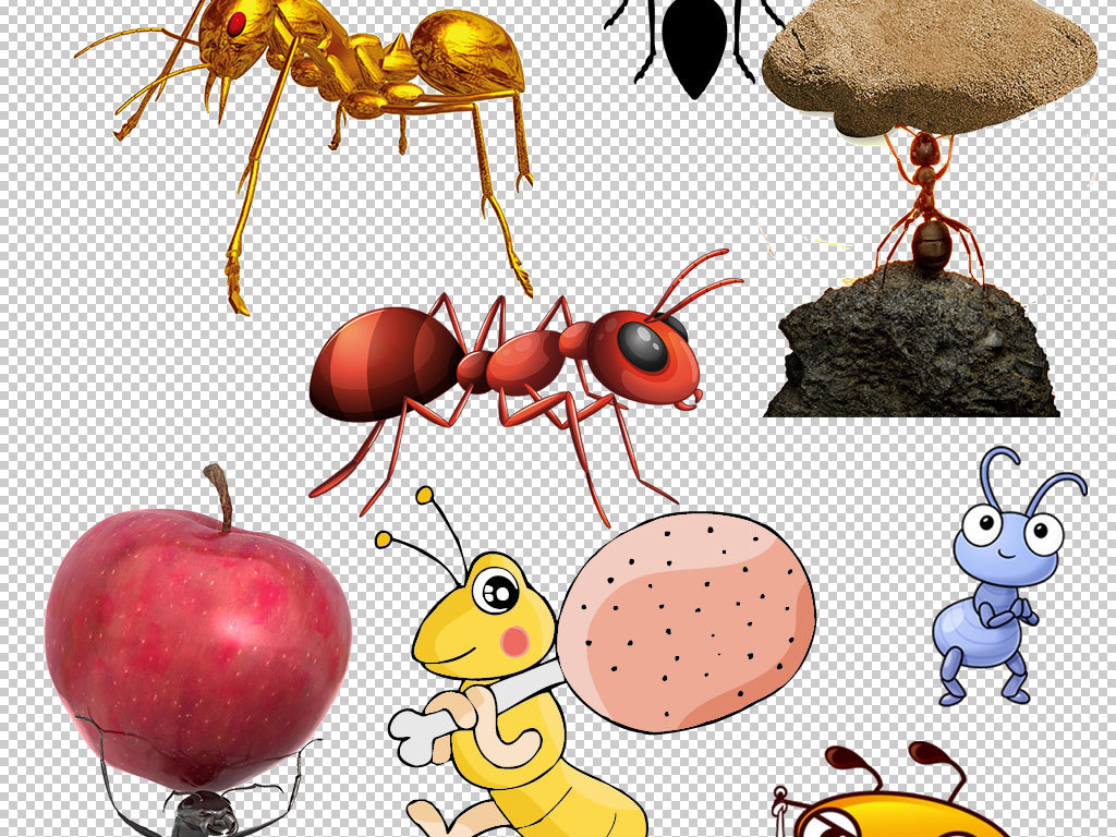 卡通蚂蚁动物图片海报素材