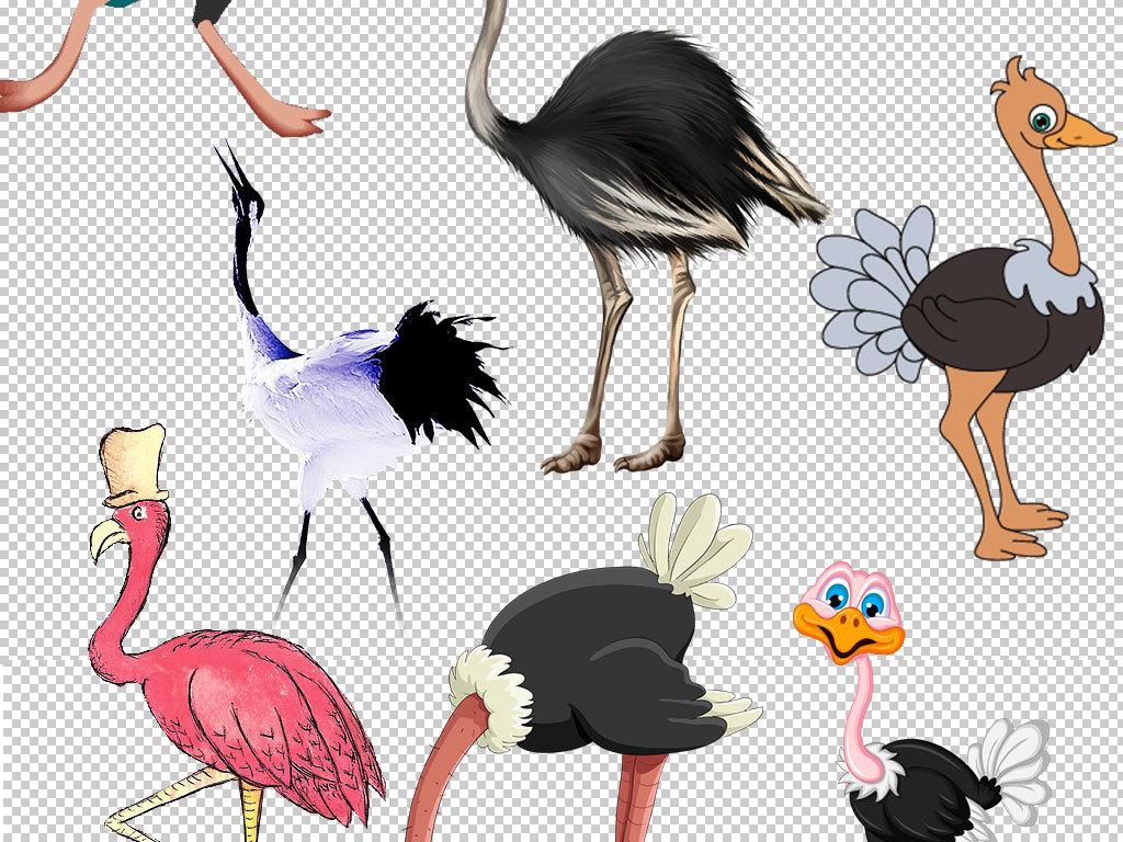 设计元素 背景素材 其他 > 卡通鸵鸟动物图片海报素材  版权图片 分享