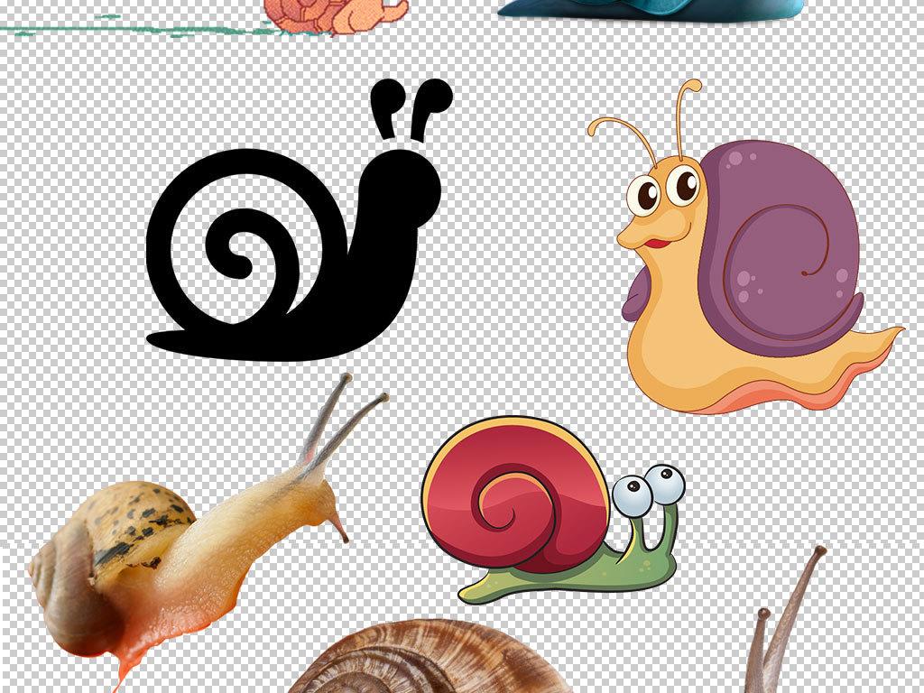 卡通蜗牛动物图片海报素材