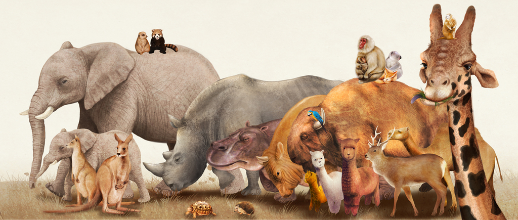 壁画手绘卡通风格动物背景墙儿童房背景墙可爱野生