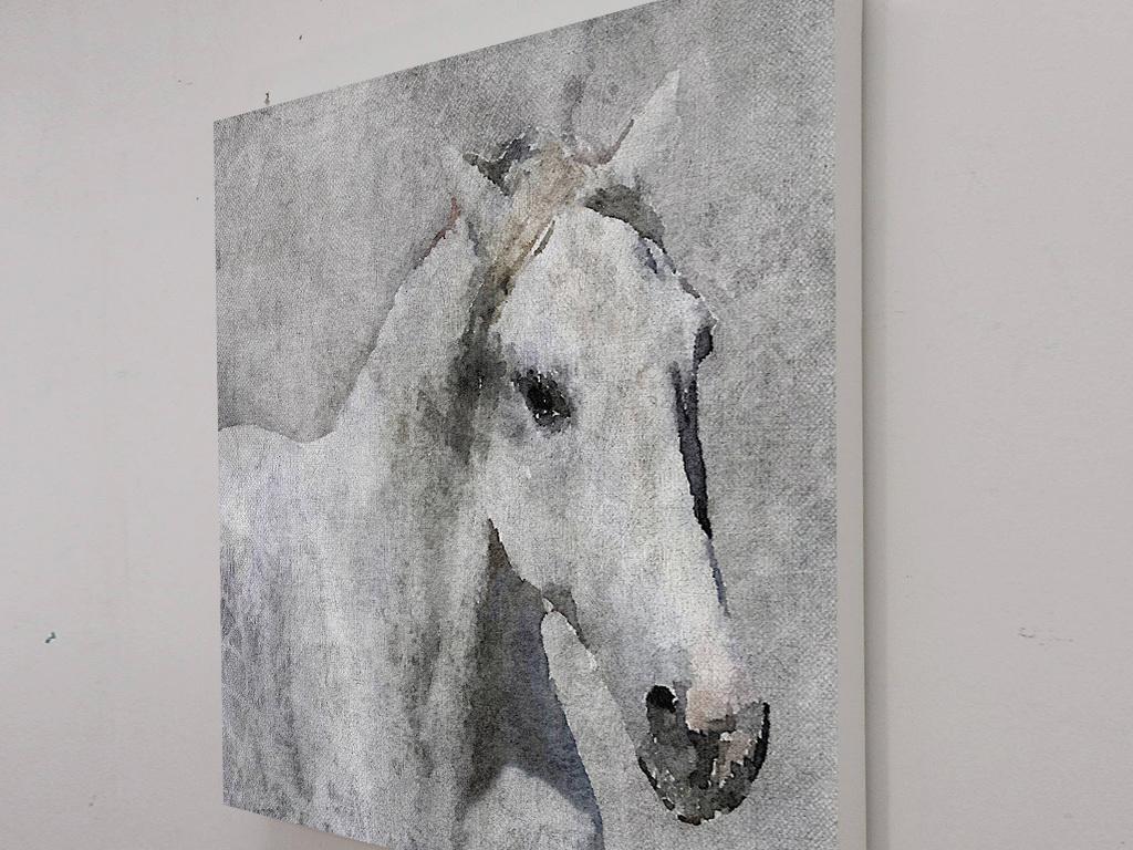 北欧现代手绘白马骏马抽象动物图案无框画