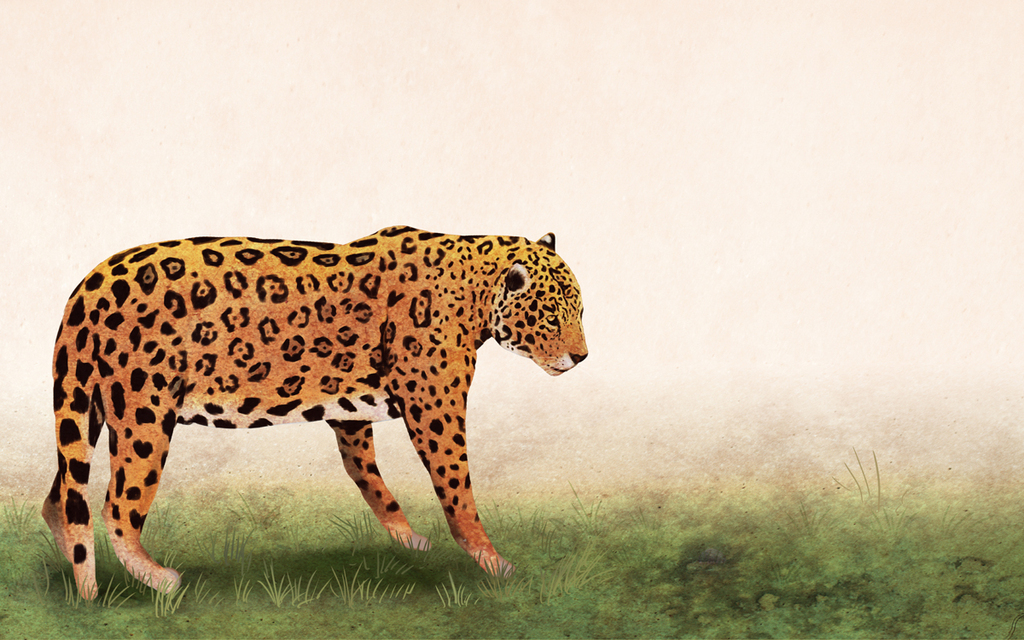 手绘卡通花豹背景墙