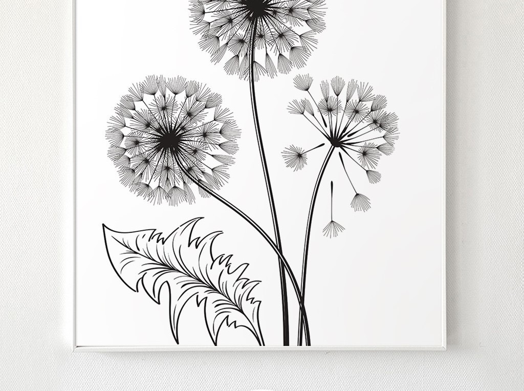 背景墙|装饰画 无框画 植物花卉无框画 > 黑白简约蒲公英小伞兵北欧