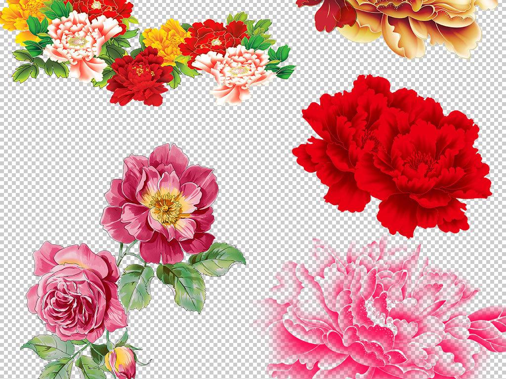 卡通牡丹植物素材鲜花素材