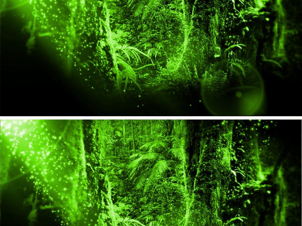梦幻绿色原始森林3d全息投影视频
