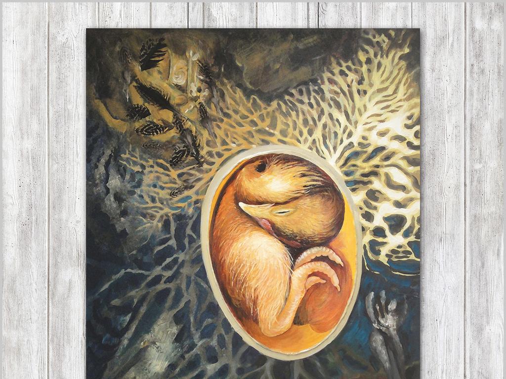 手绘酒店儿童画客厅铅笔插画速写写生艺术文艺可爱装饰画鸟素描动物