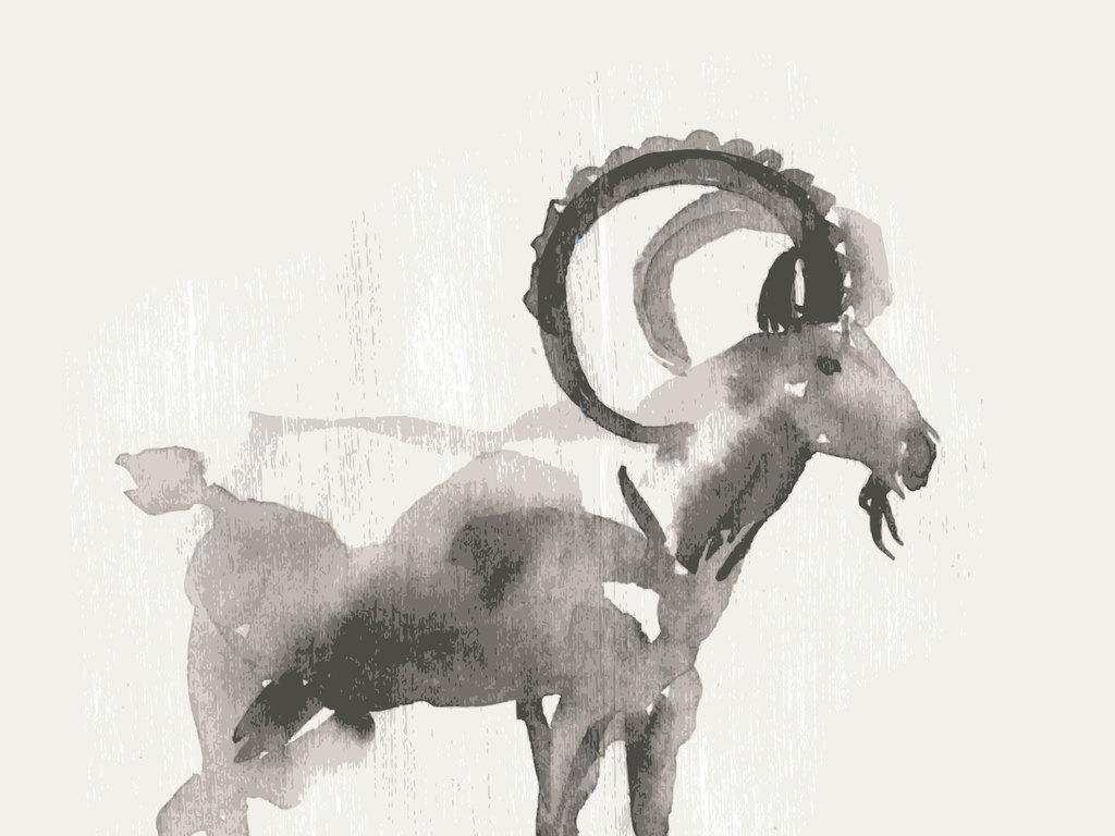 水墨动物山羊羚羊藏羚羊长角羚羊雄性