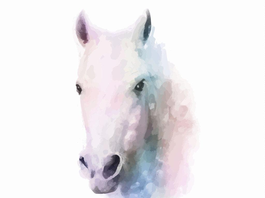 文艺动物头像水彩