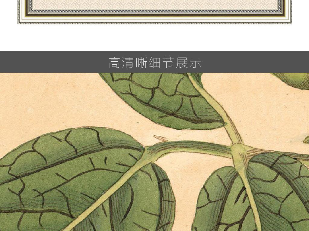 素描无框画素材高清巨幅清晰蝴蝶植物卡通动物小动物野生动物动物剪影