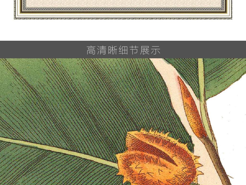素描植物无框画素材高清巨幅卡通动物小动物野生动物动物剪影卡通小动