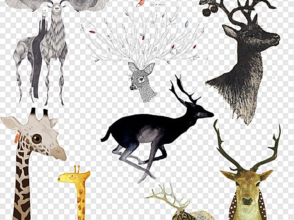 手绘小鹿古典手绘鹿头创意