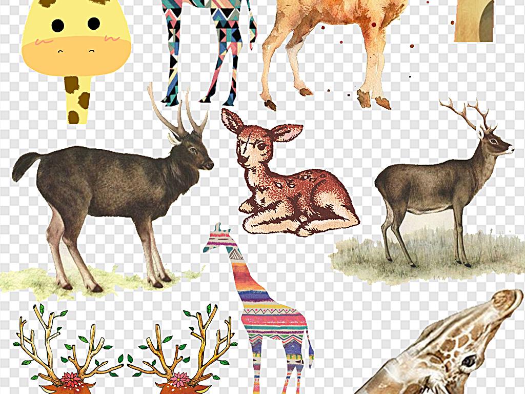 头长角鹿长颈鹿小鹿卡通可爱可爱卡通手绘卡通卡通长颈鹿卡通小鹿卡通