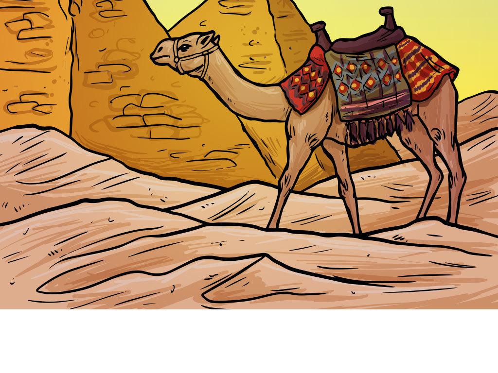 卡通金字塔沙漠骆驼插画背景图