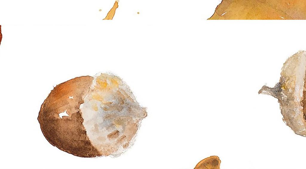 水彩枫叶树叶装饰画