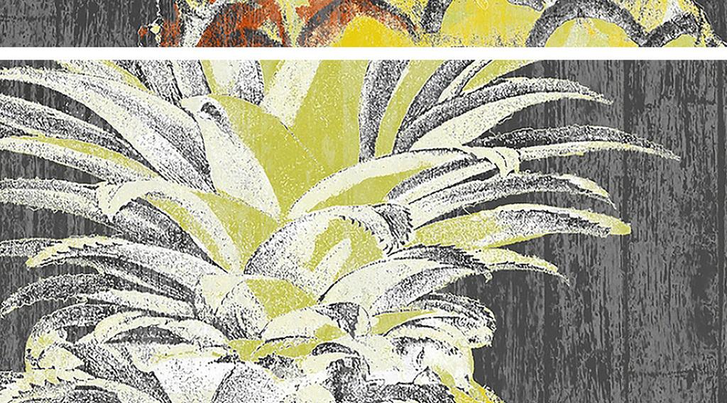 设计作品简介: 灰底菠萝装饰画 位图, rgb格式高清大图,使用软件为