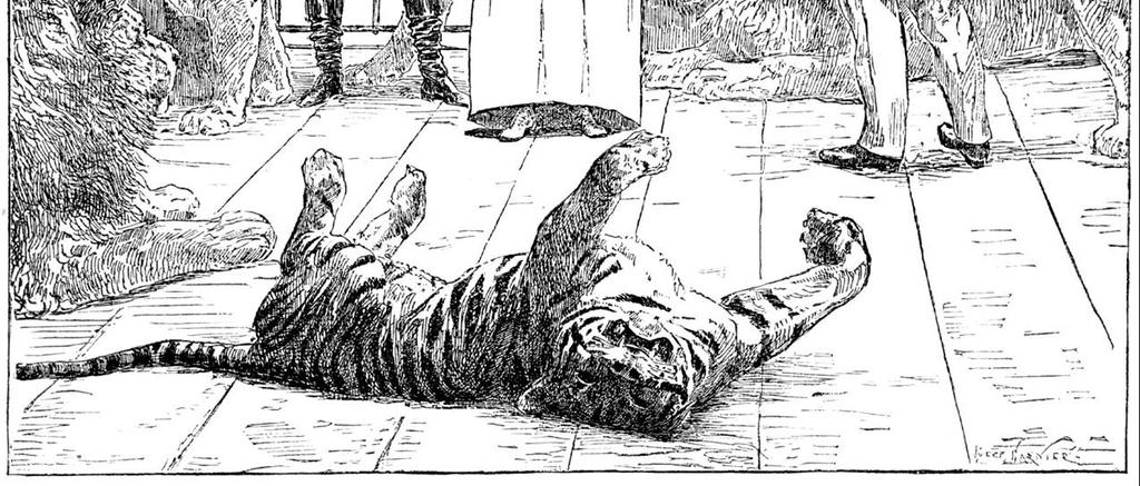 钢笔画素描欧洲美术绘画插画写生手绘战争人物战乱漫画