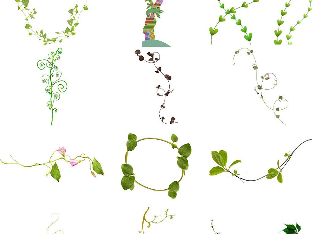 卡通花边树藤简单心形