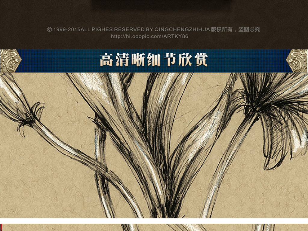 黑白植物图谱兰花装饰画