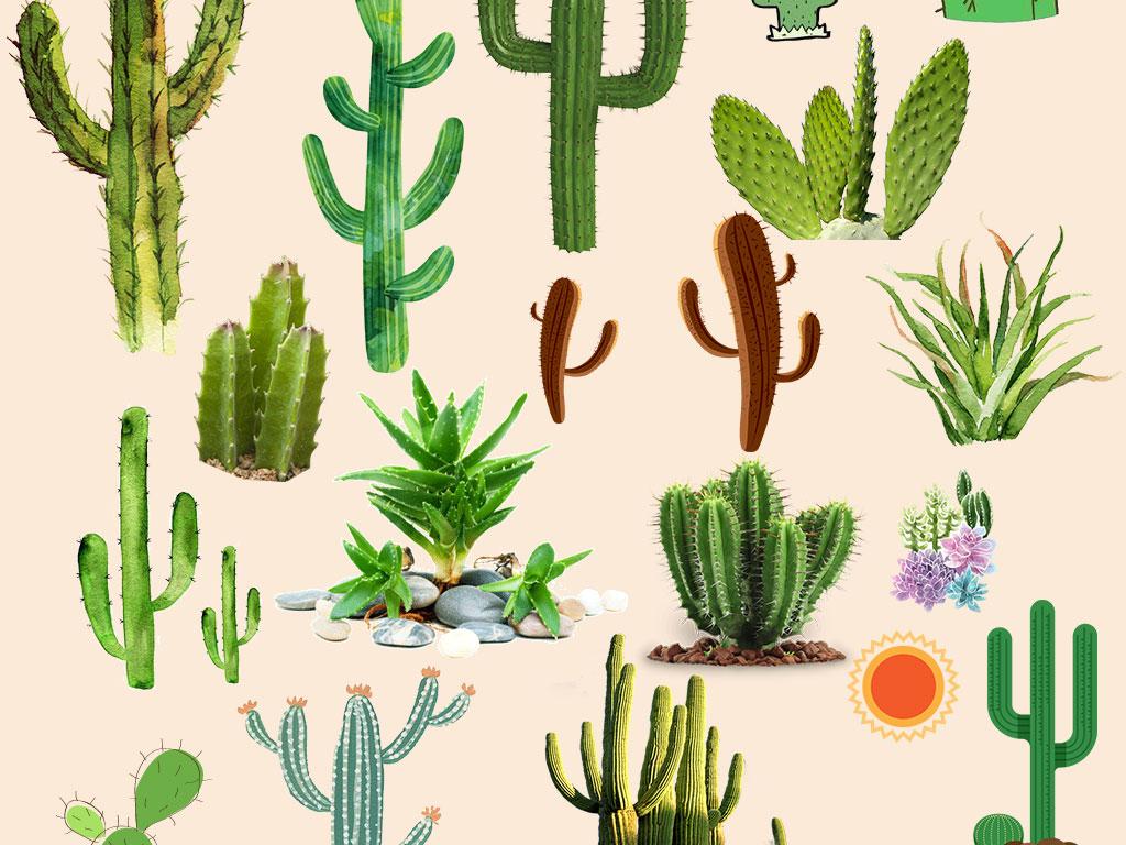 简单森系植物手绘
