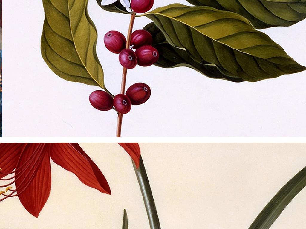 植物剪贴画 卡纸