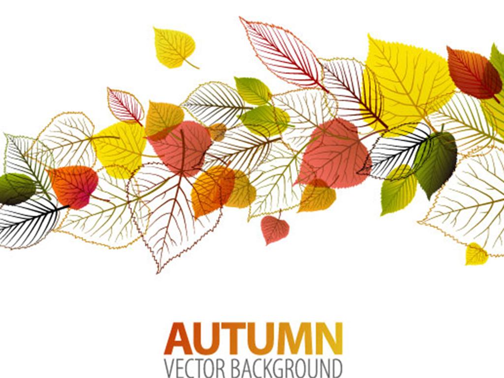 彩色树叶手绘花纹设计海报素材-金色花纹素材psd,古典边框花纹简笔
