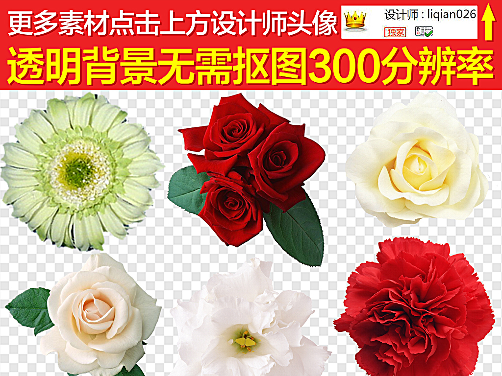 鲜花手绘手绘鲜花唯美花卉图片绿植花卉抽象