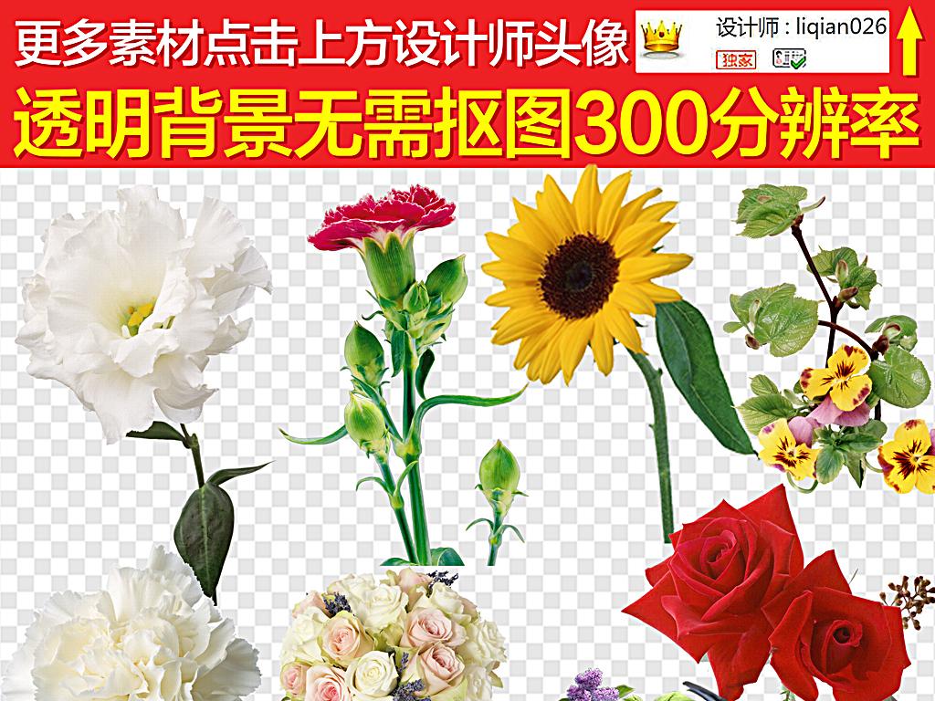 手绘鲜花鲜花拱门鲜花背景鲜花特写