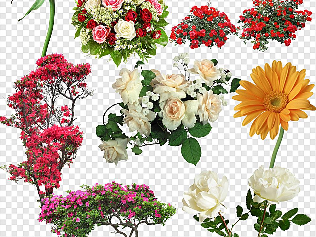 鲜花花束一束鲜花鲜花饼鲜花边框