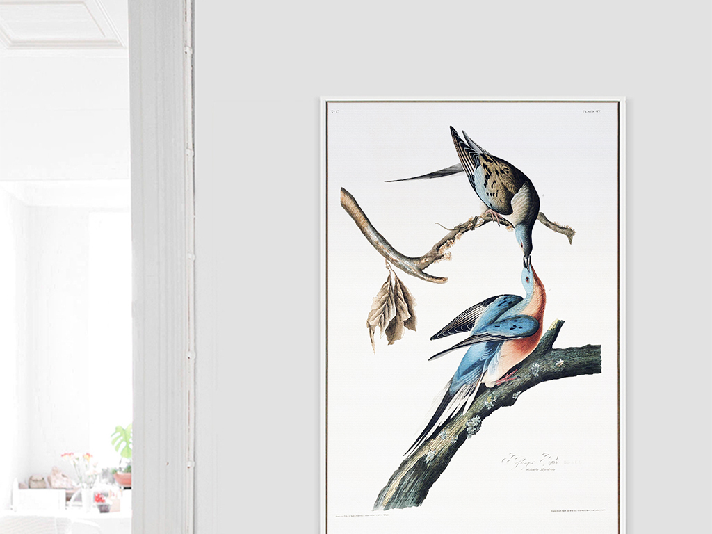 手绘花鸟现代简约装饰画
