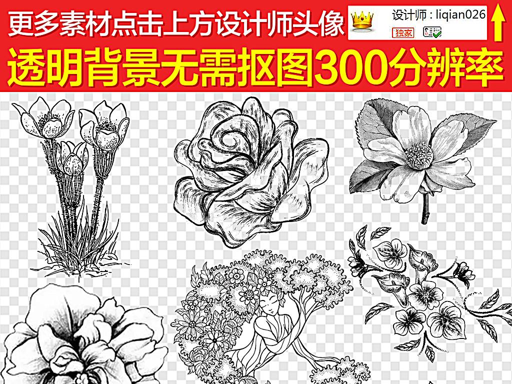 黑白素描花素描手绘花素描花藤素描小花素描大花欧式