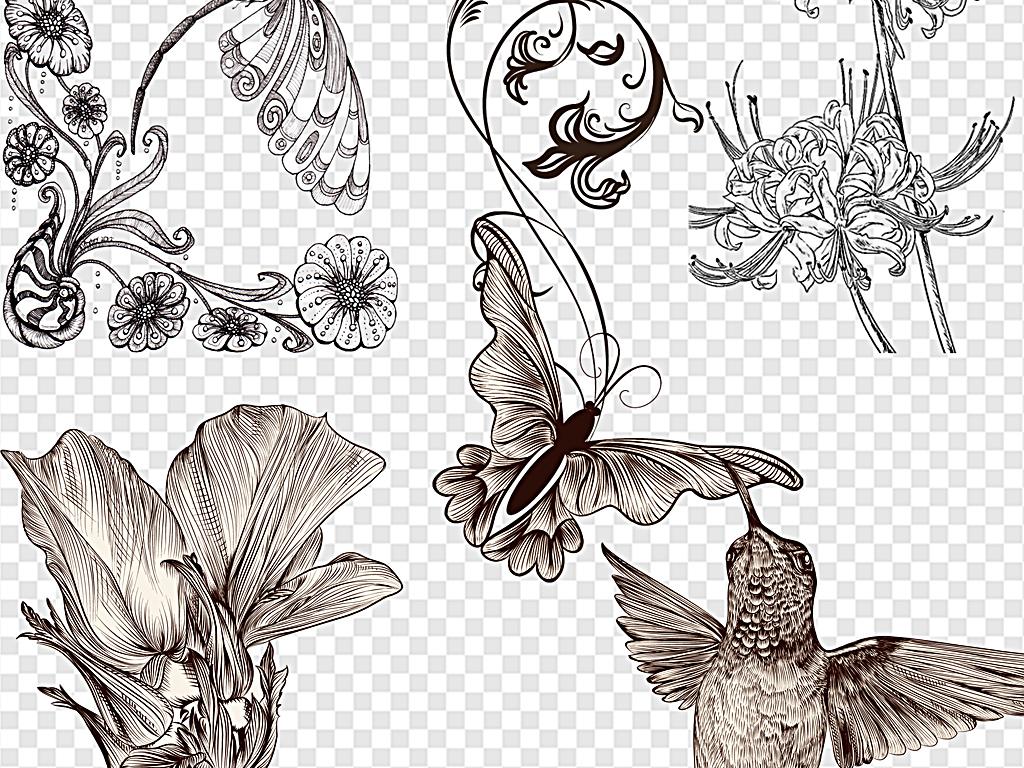 素描花鸟花素描黑白素描花素描手绘花