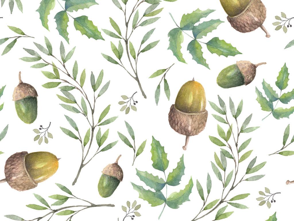 植物素材手绘叶子叶子素材手绘素材叶子树叶树叶素材手绘风景坚果坚果
