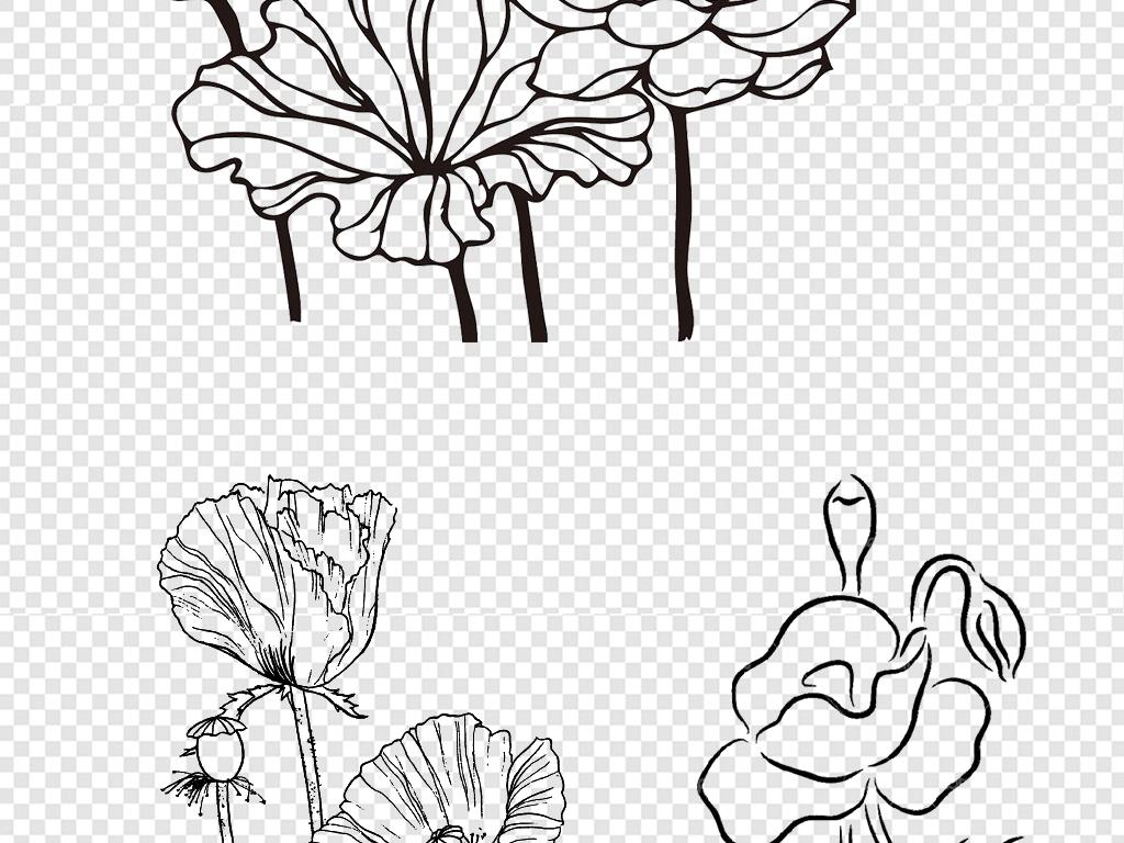 花卉简笔画 颜色
