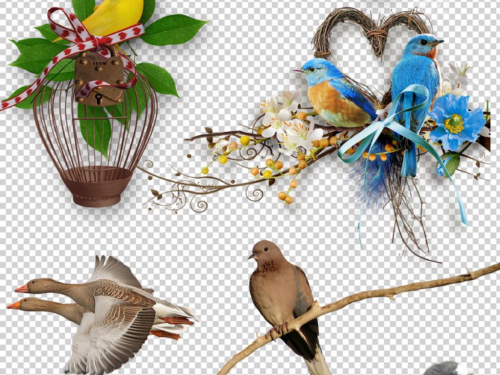 彩色鸟素材飞翔小鸟可爱的小鸟扣图水彩手绘麻雀手绘水彩手绘鸟类手绘