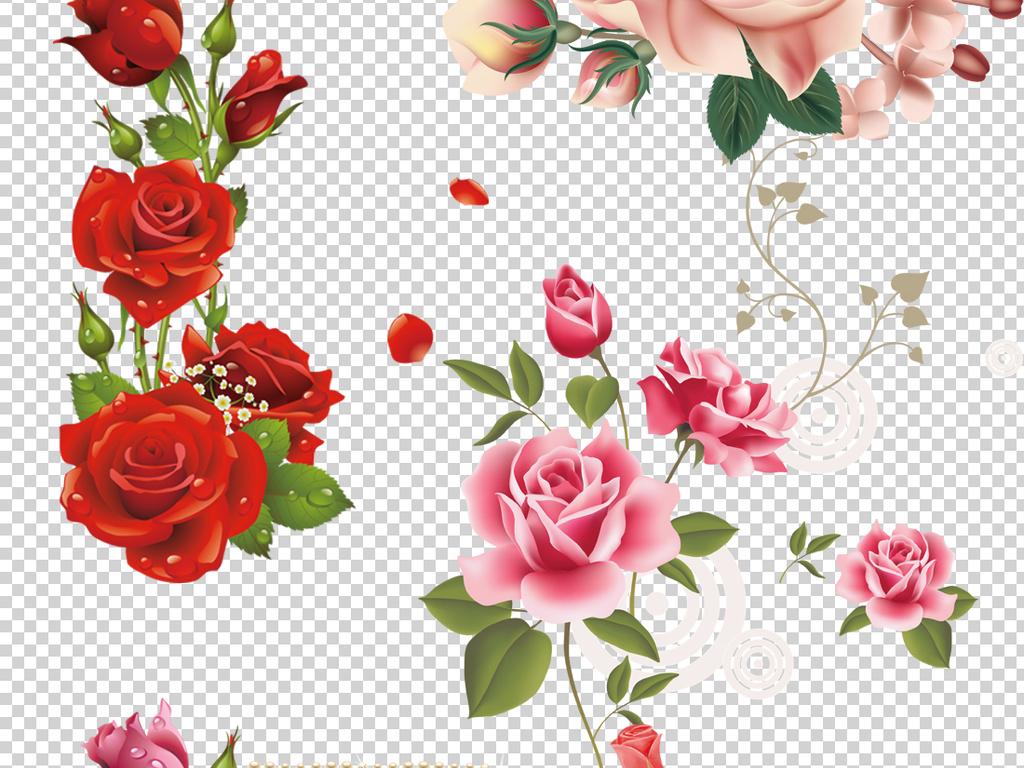 手绘高清情人节玫瑰png免抠透明背景素材