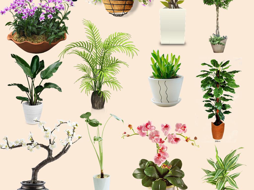 png)绿色植物盆栽鲜花盆栽植物鲜花彩绘小清新大自然花草植物摆设盆栽